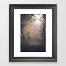 Walking in Woods Framed Art Print