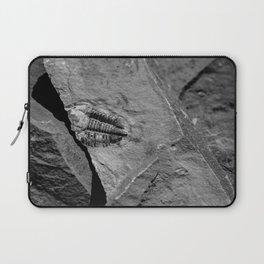 Utah - Trilobite Fossil Crack Laptop Sleeve