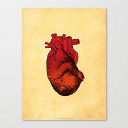 Life ! Canvas Print