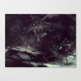 Acrylic Midnight Canvas Print