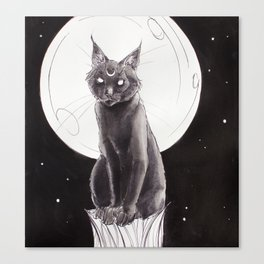Black Cat and the Moon Canvas Print