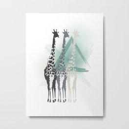 Giraffa camelopardalis Metal Print