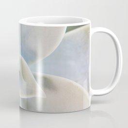 succulent plant on a Greek island Coffee Mug