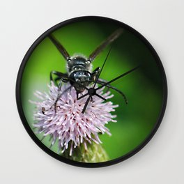 Bee and a flower Wall Clock