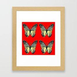 CHARCOAL GREY WESTERN BUTTERFLIES ON RED Framed Art Print