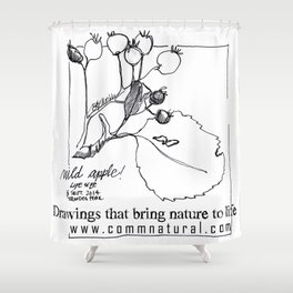 Near the origin of apples: a pen & ink drawing from Cyprus Shower Curtain