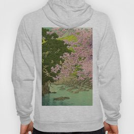 Shaha - A Place Called Home Hoody