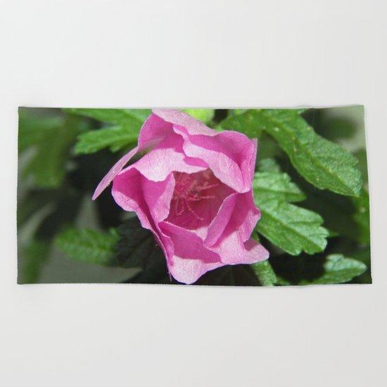 Musk Mallow - Pretty Pink Flower Beach Towel