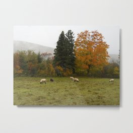Pastoral Bliss Metal Print