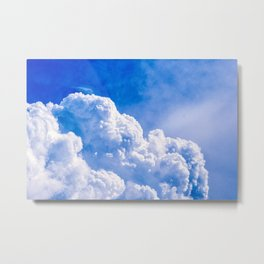 Brave Swallow Bird High Up In The Stormy Sky Metal Print