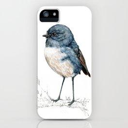 Toutouwai, New Zealand Robin bird iPhone Case
