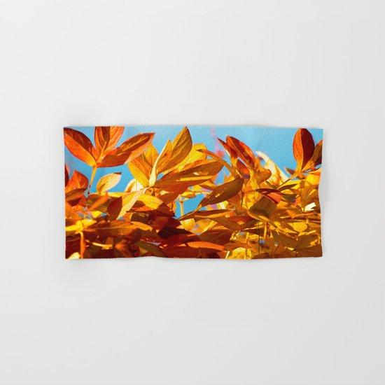 Autumn colors leaves against the blue sky Hand & Bath Towel