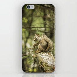 Who You Calling Squirrelly? iPhone Skin