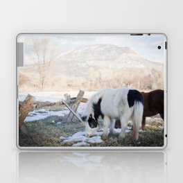 mini horses and a view Laptop & iPad Skin
