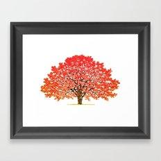 Japanese Maple 1 Framed Art Print