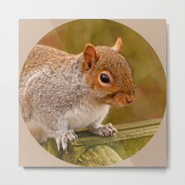 Woodland-Photos  Logo Metal Print