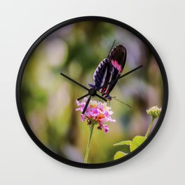 Thirsty Tropical Butterfly Wall Clock