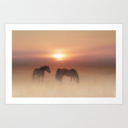 Horses in a misty dawn Art Print