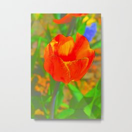 Etched Red Tulip Metal Print