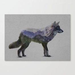 The Rocky Mountain Gray Wolf Canvas Print