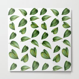 houseplant leaves Metal Print