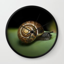 Garden snail Wall Clock