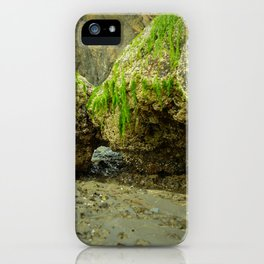 The Mossy Grotto iPhone Case