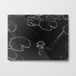 Lilypad Metal Print