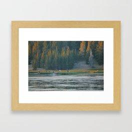 Wapiti Call Framed Art Print