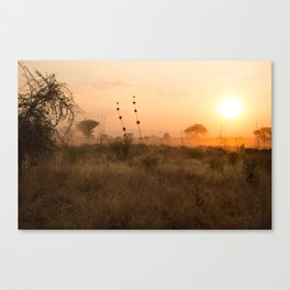 sunset in Tanzania Canvas Print
