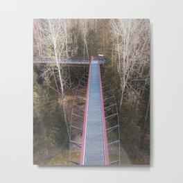 Treetop Walking Path Metal Print
