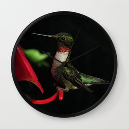 Male ruby-throated hummingbird 35 Wall Clock