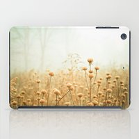 ohio iPad Cases featuring Daybreak in the Meadow by Olivia Joy StClaire