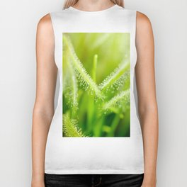 Green leaves of sundews Biker Tank