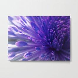 Flower_34 Metal Print