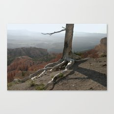 Tree on a Ridge in Bryce Canyon Canvas Print