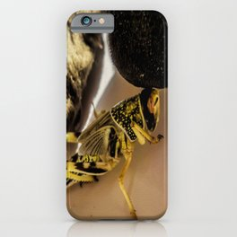 Short encounter iPhone Case