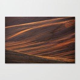 Tuscany Landscape Canvas Print