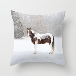 Pinto Horse In Snow Throw Pillow