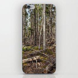 acadian woods iPhone Skin