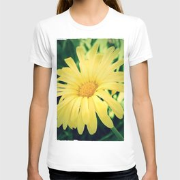 Cool Summer T-shirt