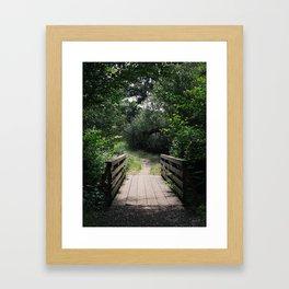 Spring Trail Framed Art Print