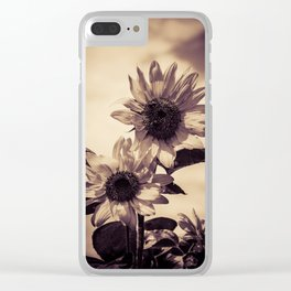 Post card Sunflowers Clear iPhone Case