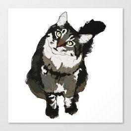 Cat Yellow Eyes Canvas Print