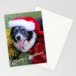 Christmas Wishes From Molly Stationery Cards