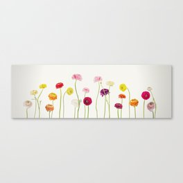 whispering spring Canvas Print