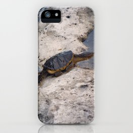 Snapping Turtle iPhone Case