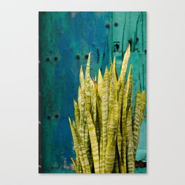 Blue Green Gran Canaria Colors Canvas Print