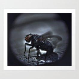 fly ties  Art Print