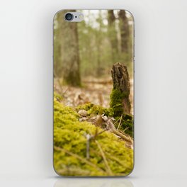 Mossy forest floor iPhone Skin